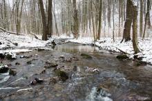 Křtinský potok kousek pod Hutí, mezi stromy ještě prosvítá červená koruna pece.
