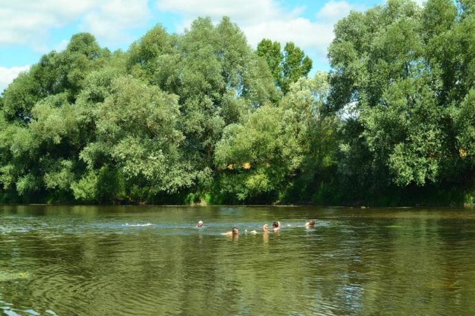 Koupání v řece Moselle